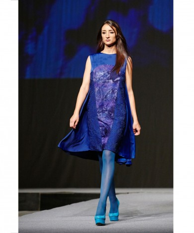 rochie albastra Striped Wrasse